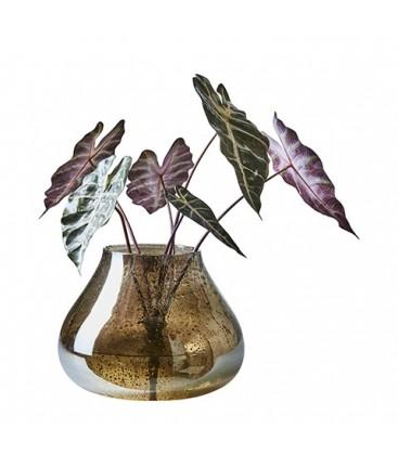 vase en verre vendu par lot de 12
