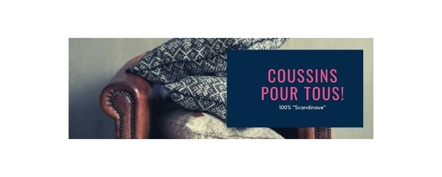 Coussins & Taie d'oreiller
